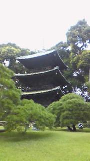 秋田から祖母が来ました。