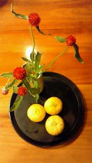 毎日の柚子