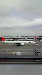 成田空港散歩