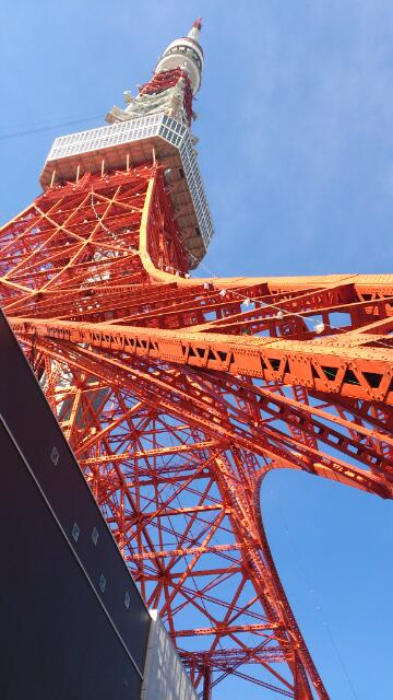 迫力、東京タワー
