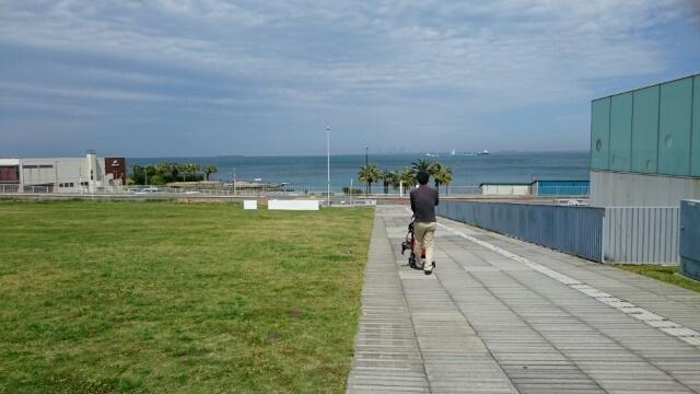 横須賀美術館から海を臨む