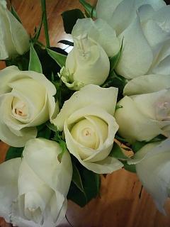 三百円の白バラ