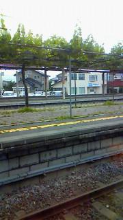 駅のホームに!