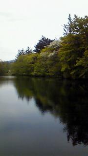 新緑の軽井沢散歩