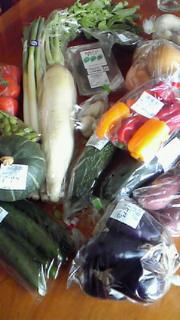 宮城からの野菜