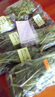 齋藤さんの野菜