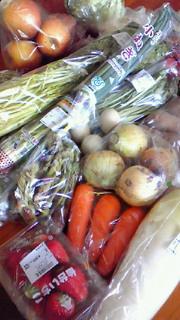 宮城の野菜!
