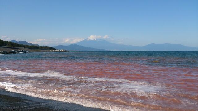 三保の松原と、富士山と、箱根と、赤潮
